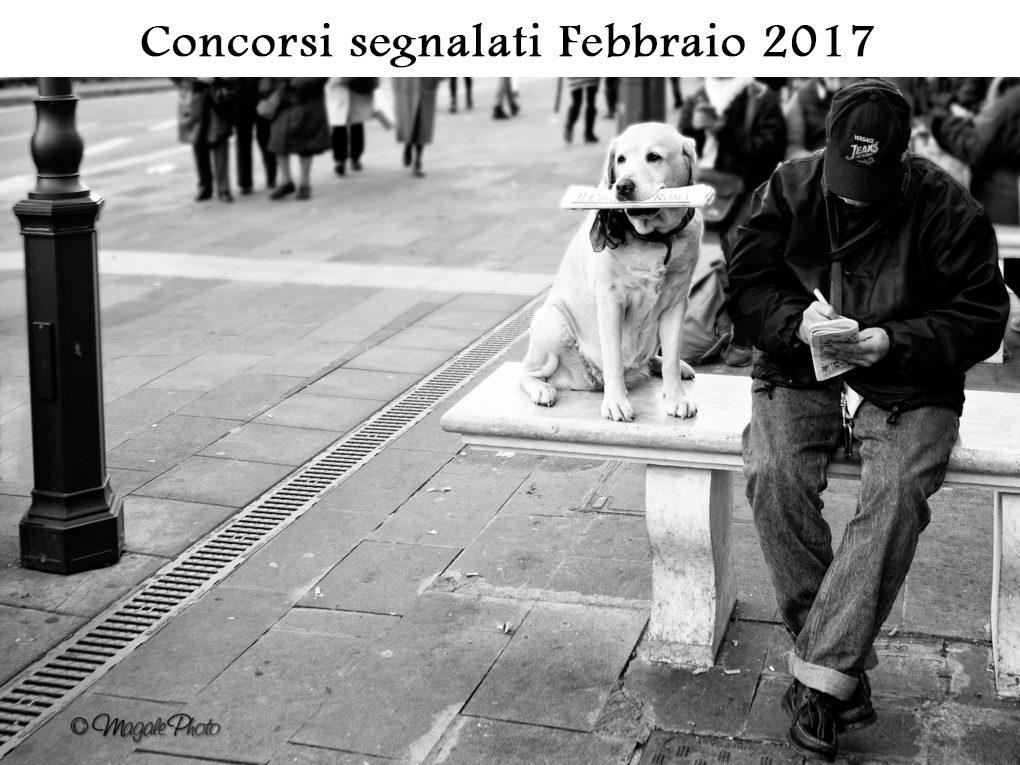 Affamato-di-notizie-febbraio 2017